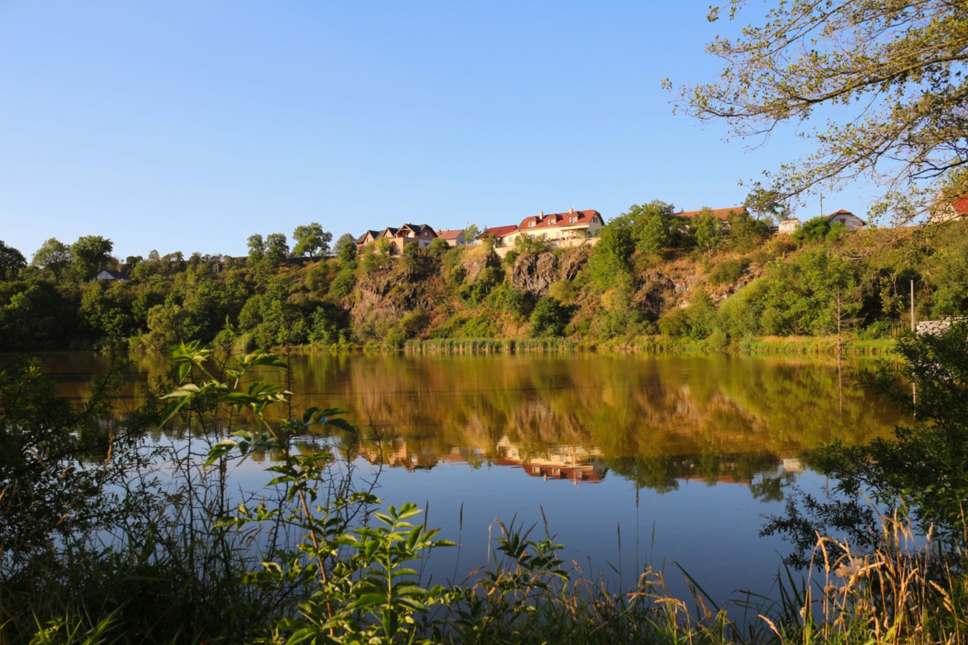 Malá Lečice - rybník